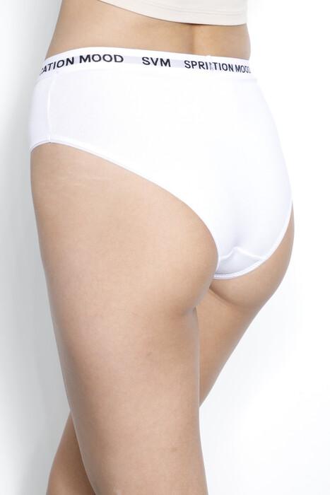 SEVİM - 13050 Kadın Hipster Külot (1)